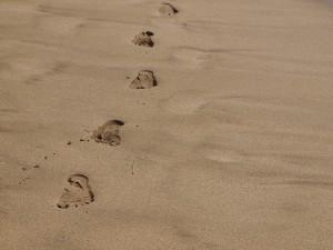 記念に足跡を残してきました(数秒で消えましたが・・・)